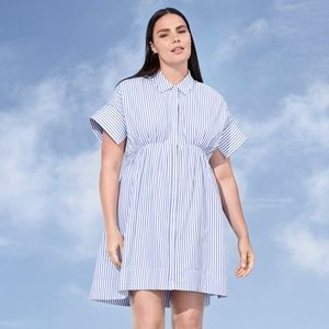 Victoria Beckham x Target Poplin Blue Stripe Dress